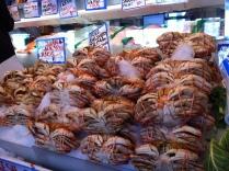 Huge Dungeness Crabs
