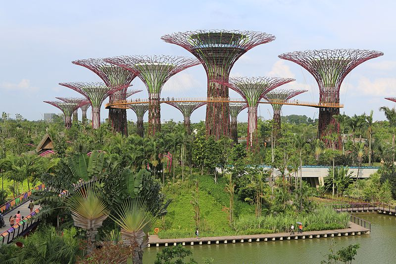 800px-Supertree_Grove,_Gardens_by_the_Bay,_Singapore_-_20120712-02