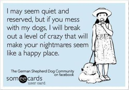 beware-of-dogs-funny-quotes