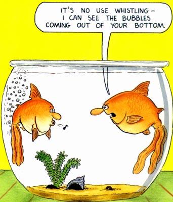 fishbowljoke